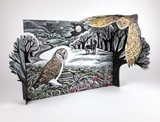 Owl in Winter Advent Calendar