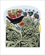 Blackbird Stealing Red Currants