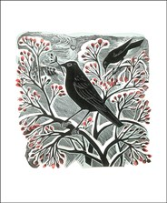 Blackbirds and Berries