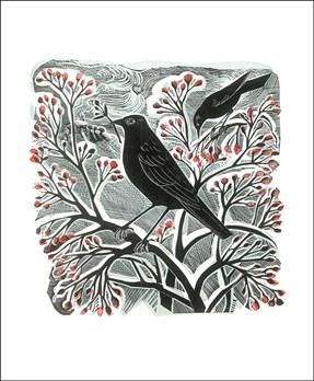 Blackbirds and Berries