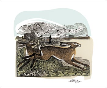 Hares at Orford Ness