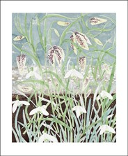 Fritillaries and Snowdrops