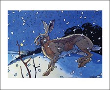 Winter Hare II