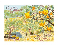 Q is for Quince and Quail