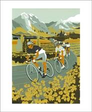 Vineyard Cyclists