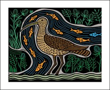 Conyer Curlew