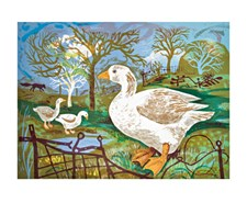 Orchard Goose