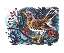 Winter Thrush