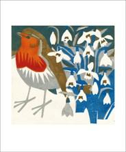 Snowdrop Robin