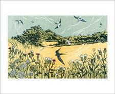 Bayfield Swallows