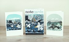Gannets at Rathlin Island / Seal Song