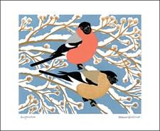 Bullfinches