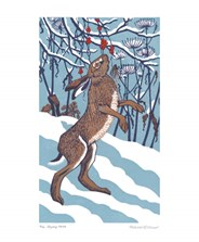 Bryony Hare