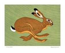 Hurry Hare